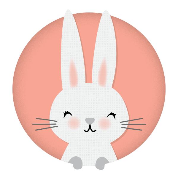 rabbit years