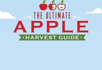 HarvestGuide Final