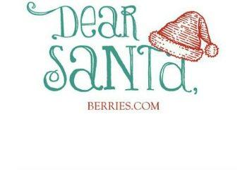 Santa Letter BlogCover blog131210 1
