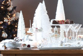 White Christmas Celebration!
