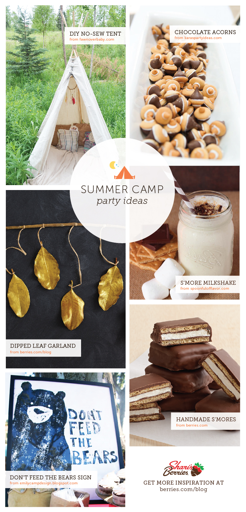 Summer Party Theme: Camp Out