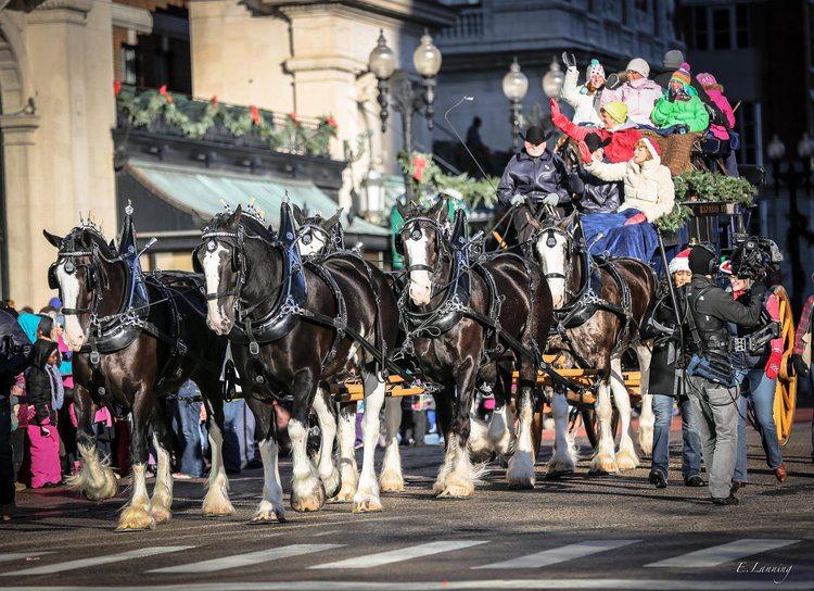 Grand Rapids Christmas parade