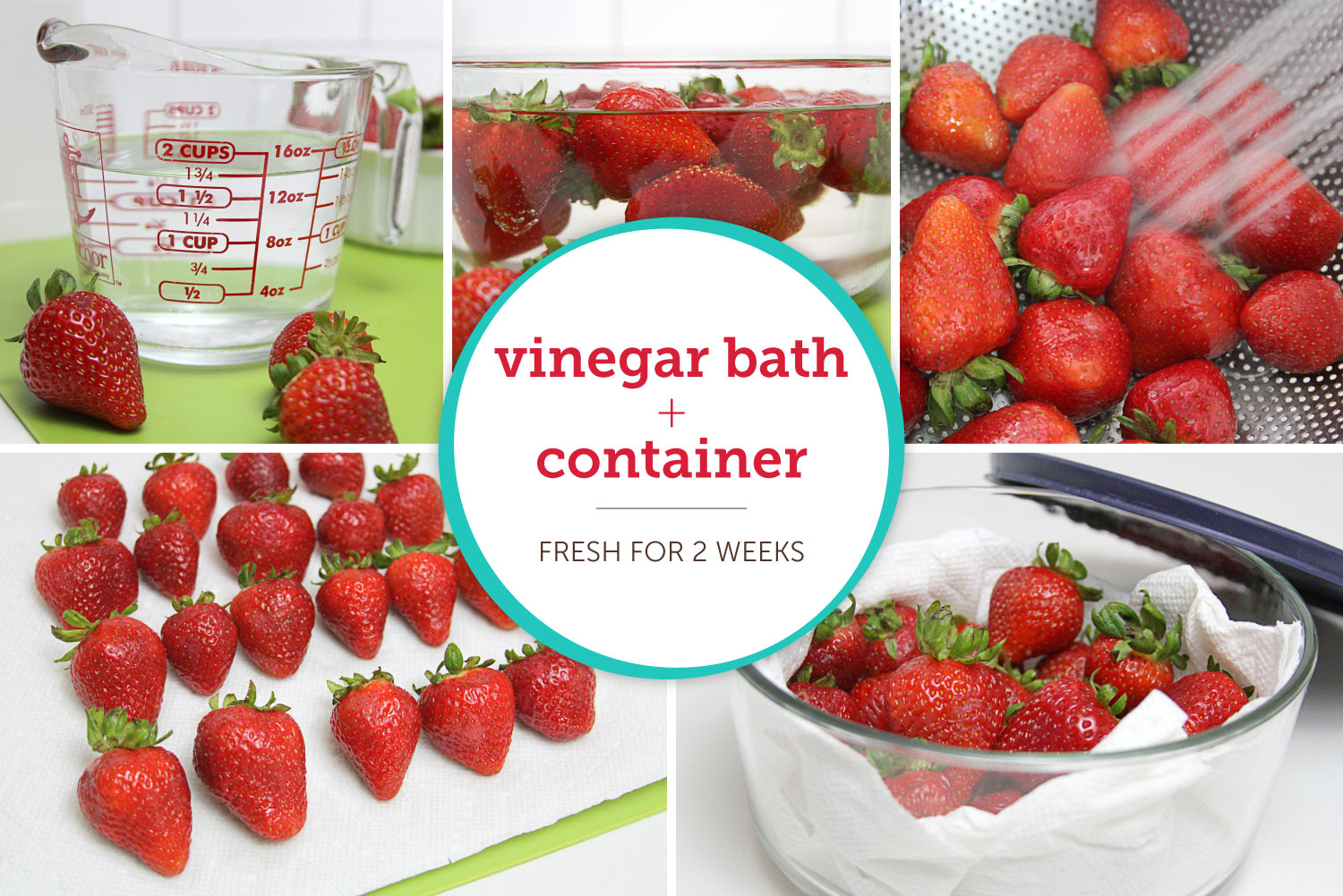 How To Store Strawberries For Up To Two Weeks Shari S Berries Blog